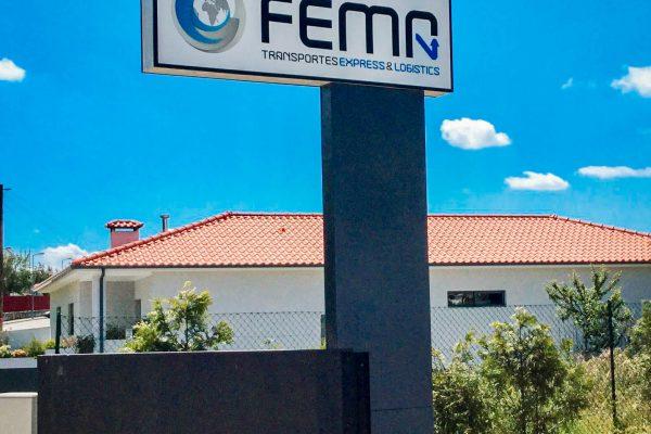 Totem_-_FEMA-min